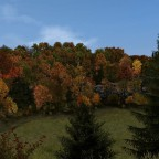 Beautiful autumn colors in the forest land.